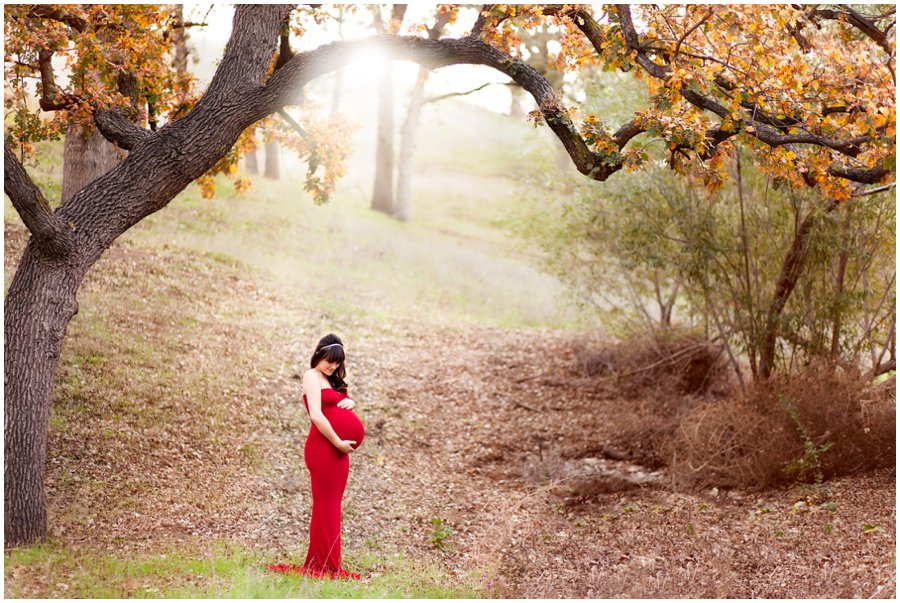 Dreamy and Dramatic Maternity Portraits in the woods by Just Maggie Photography - Los Angeles Maternity and Newborn Photographer