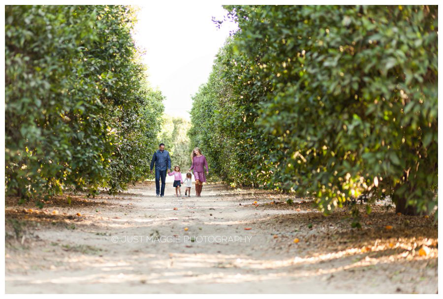 Modern family portrait photography in an orchard by Just Maggie Photography - Santa Clarita Family Portrait Photographer