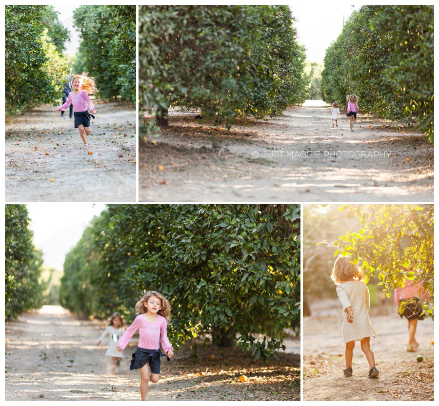 Family photography in the orchard by Just Maggie Photography - Santa Clarita Family Portrait Photographer